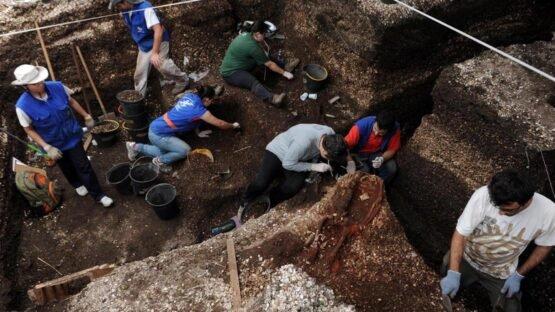 Sítio arqueológico Cabeçudas, às margens da BR-101,Laguna, SC