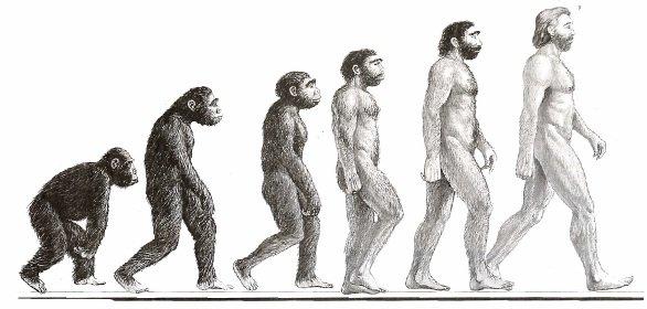 A evolução humana em uma escala progressiva: exemplo de um estereótipo.