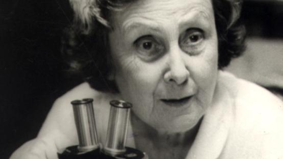 FOTO: Bertha Lutz (1894-1976), pioneira das lutas femininas no Brasil e reconhecida internacionalmente por suas contribuições na pesquisa zoológica.